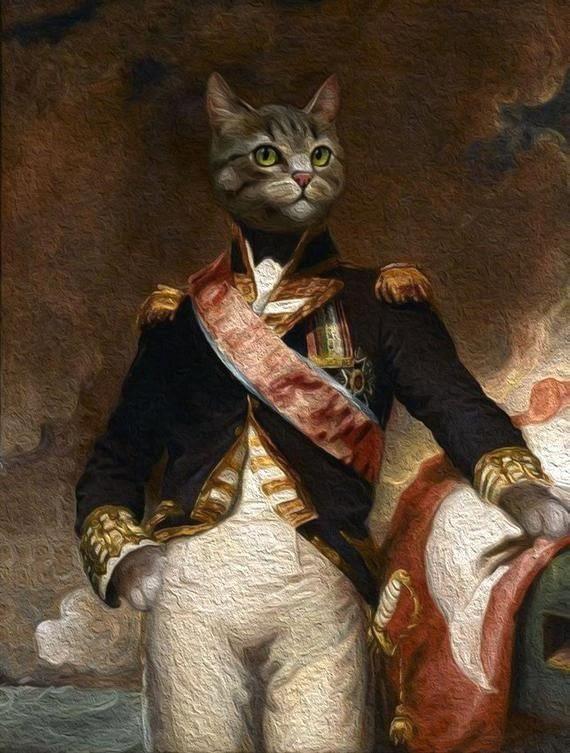 royal cat portrait/FACE SWIPE PORTRAIT