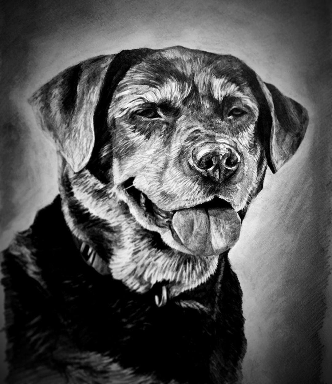 PET CHARCOAL portrait Drawing | paint my pet now